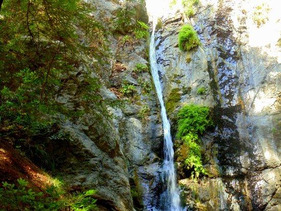 Pfeiffer Big Sur State Park: Big Sur