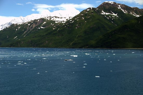 The Icy Water Near The Glacier Picture Of Hubbard