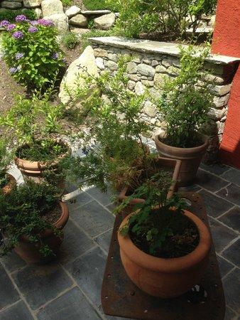 Agriturismo Tre Terre: Hoteleingang