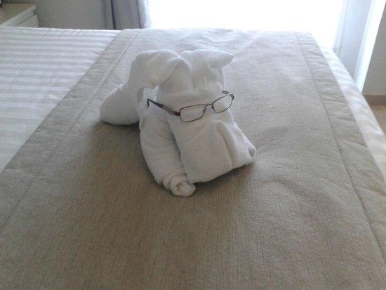 Grand Hotel Nastro Azzurro & Occhio Marino Resort: Found an intruder in our bedroom.