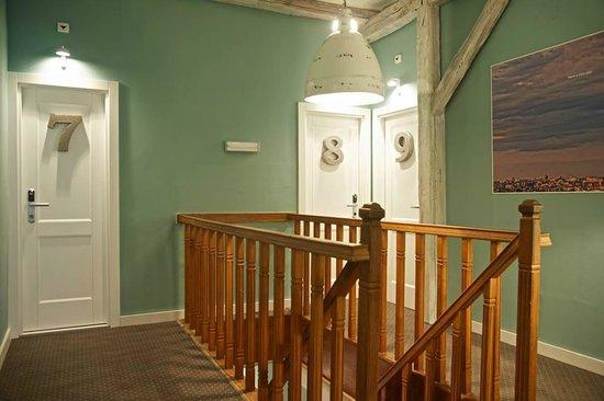 Smokvica B&B: 8 rooms available