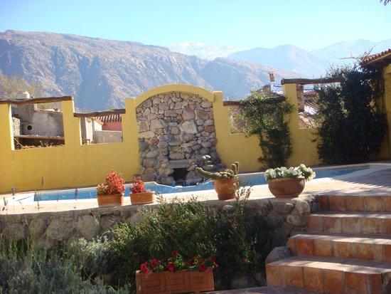 Hotel Killa Cafayate: vista del jardín