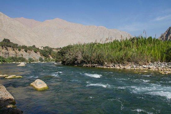 Hotel Los Palomos: a pocos pasos uno puede estar en la rivera del río Cañete.