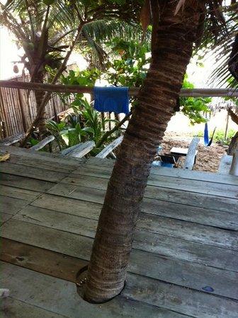 Bambu Ecocabanas: Terrasse