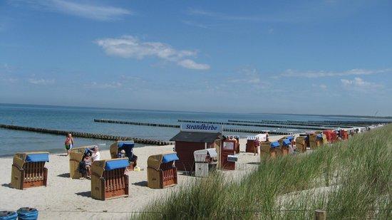 TheGrand Ahrenshoop: Der Strand vorm Kurhaus