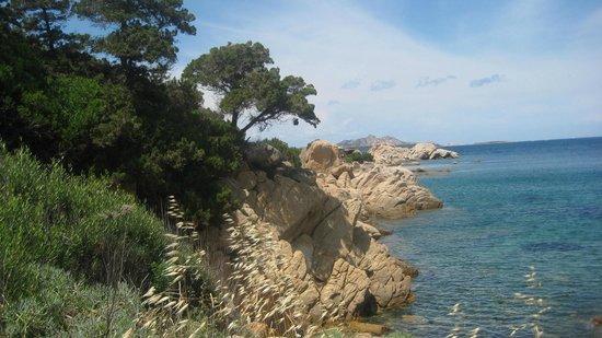 La Quercia della Gallura : Beach