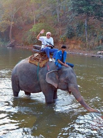 Dusit Island Resort Chiang Rai: Elephant Park - riding an elephant