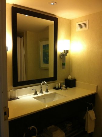 Renaissance Arlington Capital View Hotel: Bathroom