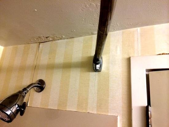 Fairfield Inn & Suites Beckley : Really gross.  I can't believe a double suite would look like this in the bathroom....