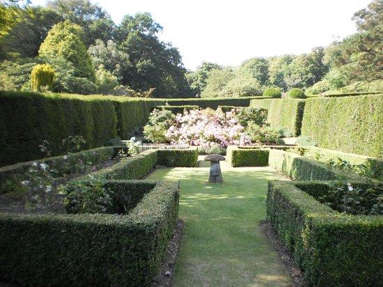 St Peter's Church: Mottistone garden