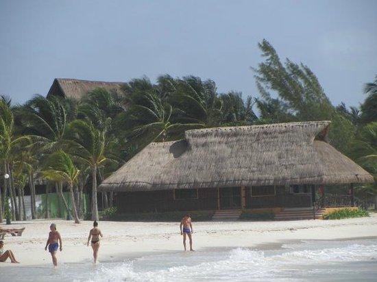 Barcelo Bavaro Beach - Adults Only : pileta y playa