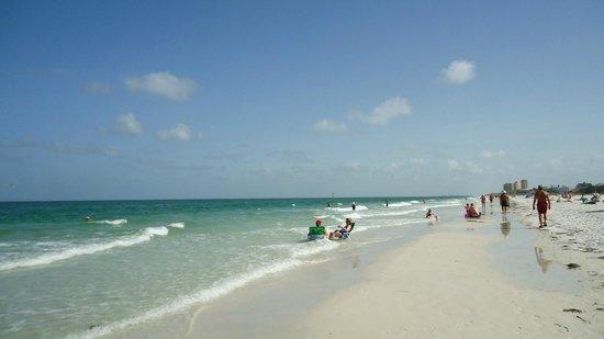 Clearwater Beach : Linda praia!