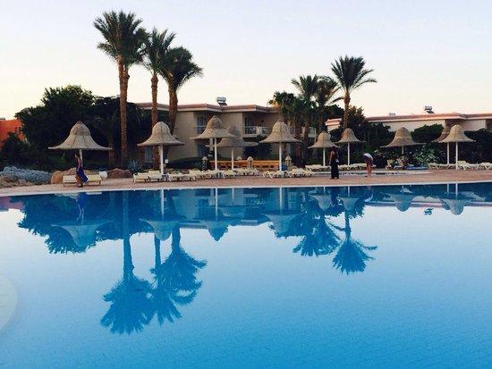 Parrotel Beach Resort : Pool at sun set