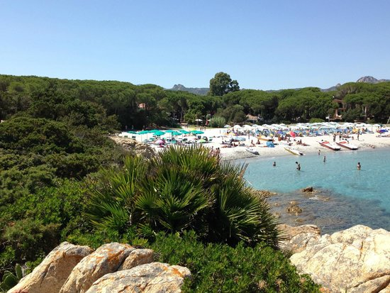 Tirreno Resort : Strandliegen blau, des Hotels