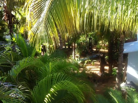 Villa Mozart y Macondo : Blick vom Balkon in den Garten