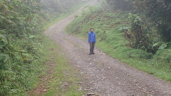 Vista Verde Lodge: Walking/hiking down to Skyride