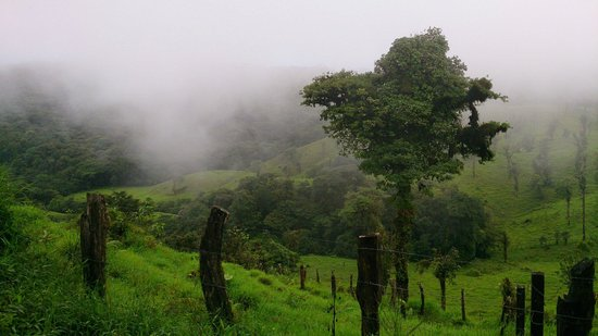Hotel Vista Verde Lodge: My picture perfect from the road as we hike down to Skyride.