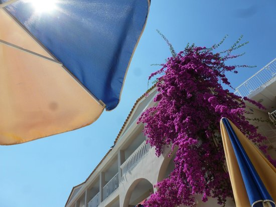 Planos Apart Hotel 사진