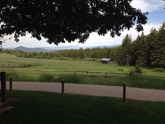 Trail Creek Ranch : View from the king size bed!