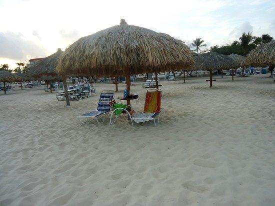 Tropicana Aruba Resort & Casino: Our beach spot daily