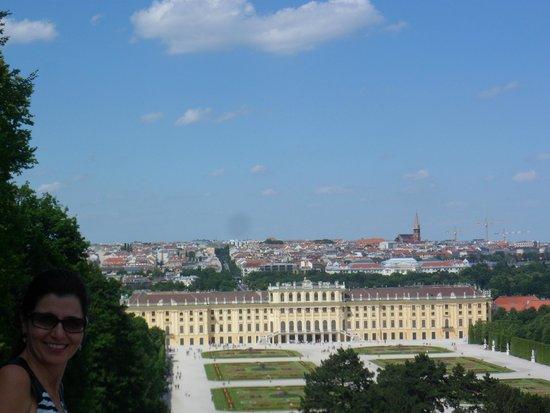 Schloss Schönbrunn: vista do alto.De Gloriete