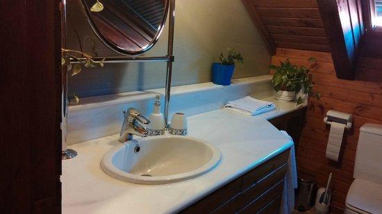 Hotel Posada Don Jaime: baño