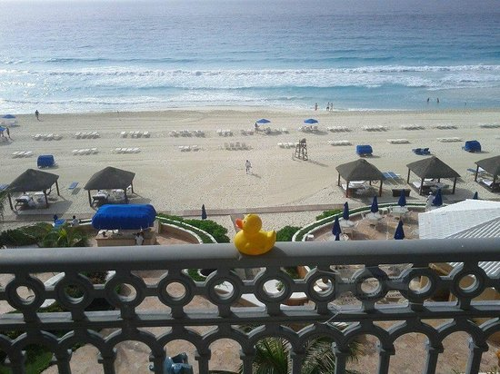 Ritz-Carlton Cancun: the duck enjoyed the view from our room