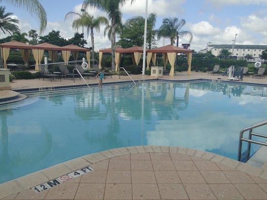 Hilton Garden Inn Orlando International Drive North: pool
