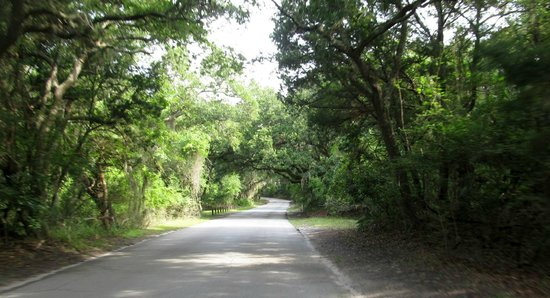 Fort Clinch State Park : Driving towards Fort Clinch