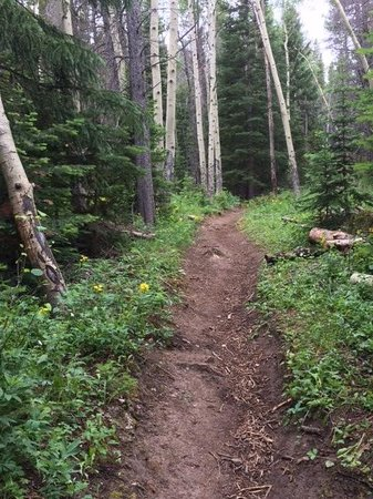 Rams Horn Village Resort: Millcreek trail
