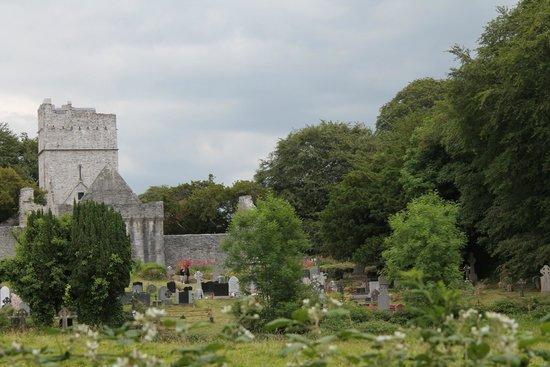 Killarney National Park: Muckross Friary
