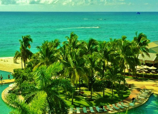 Grand Lucayan, Bahamas: View of Ocean & palm trees from room