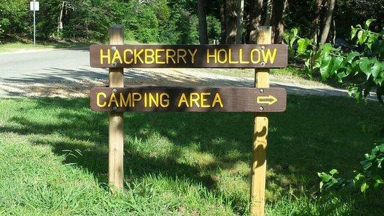 Bonham State Park: Camping area
