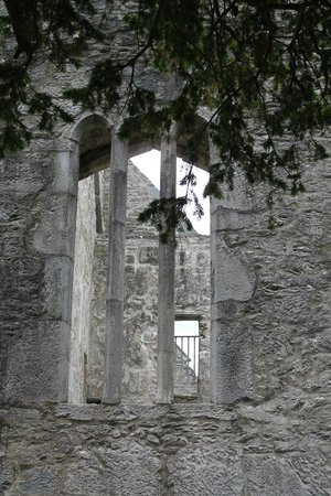 Muckross Abbey : Stunning