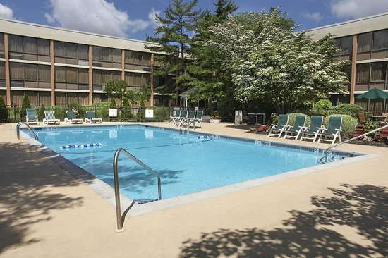 Pool area picture of holiday inn westbury carle place tripadvisor for Springhill suites carle place garden city
