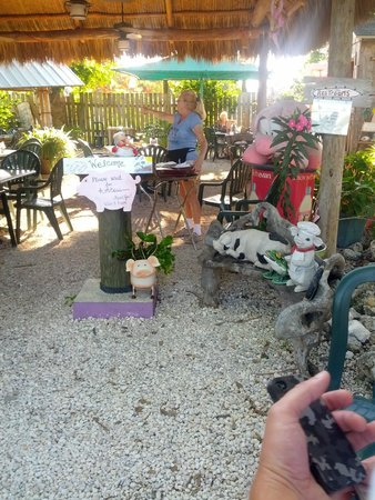 The Stuffed Pig : Outdoor seating