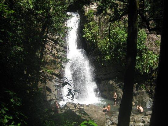 La Mina Falls: from afar