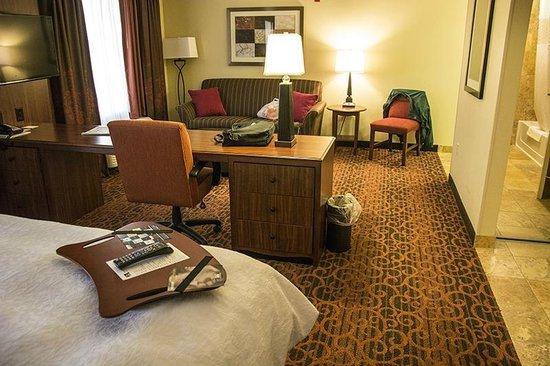 Hampton Inn & Suites Jamestown ND: Suite #225
