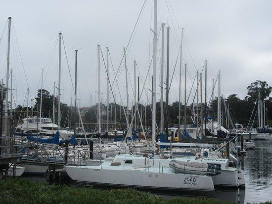 Santa Cruz Harbor - Where Johnny's Harborside is Located, Santa Cruz, CA