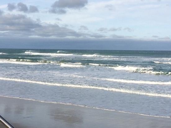Dunedin Beach: beach