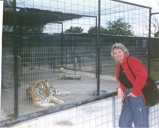 Turpentine Creek Wildlife Refuge: Me, in 2002, with my tiger friend at T.C.