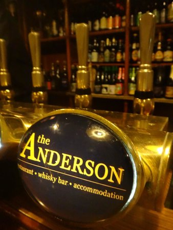 The Anderson : Draft