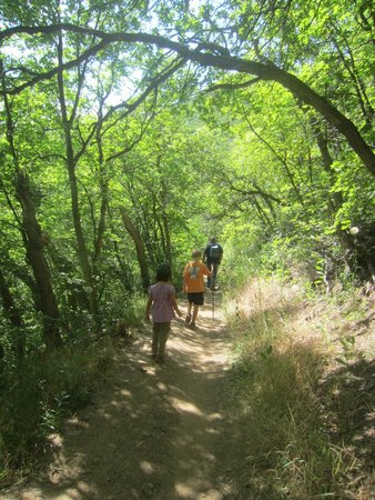 Mill Creek Canyon: Walking the pipeline trail