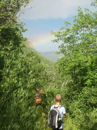 Mill Creek Canyon: Hiking toward the end of the rainbow on pipeline trail