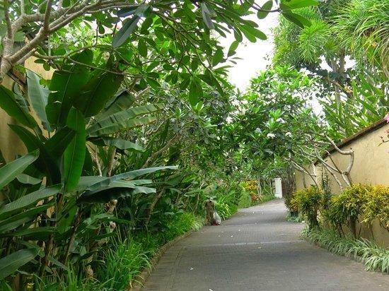 Pat-Mase, Villas at Jimbaran : The walk to the reception.