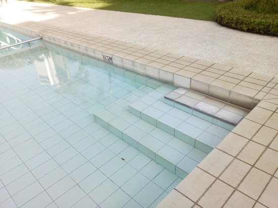 Goodwood Park Hotel : Mouldy Pool