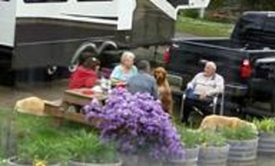 Rovers Rv Park Campground Reviews Waldport Or