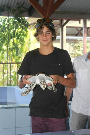 Turtle Conservation and Education Centre: Holding a bigger one