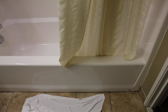 Microtel Inn & Suites by Wyndham Michigan City : shower curtain too short