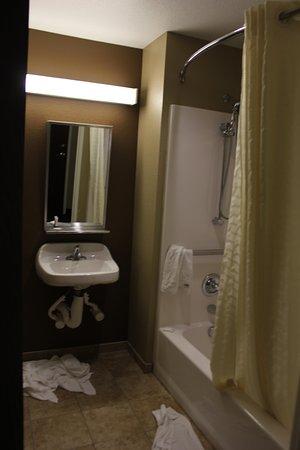 Microtel Inn & Suites by Wyndham Michigan City: inconvenient mirror/sink area